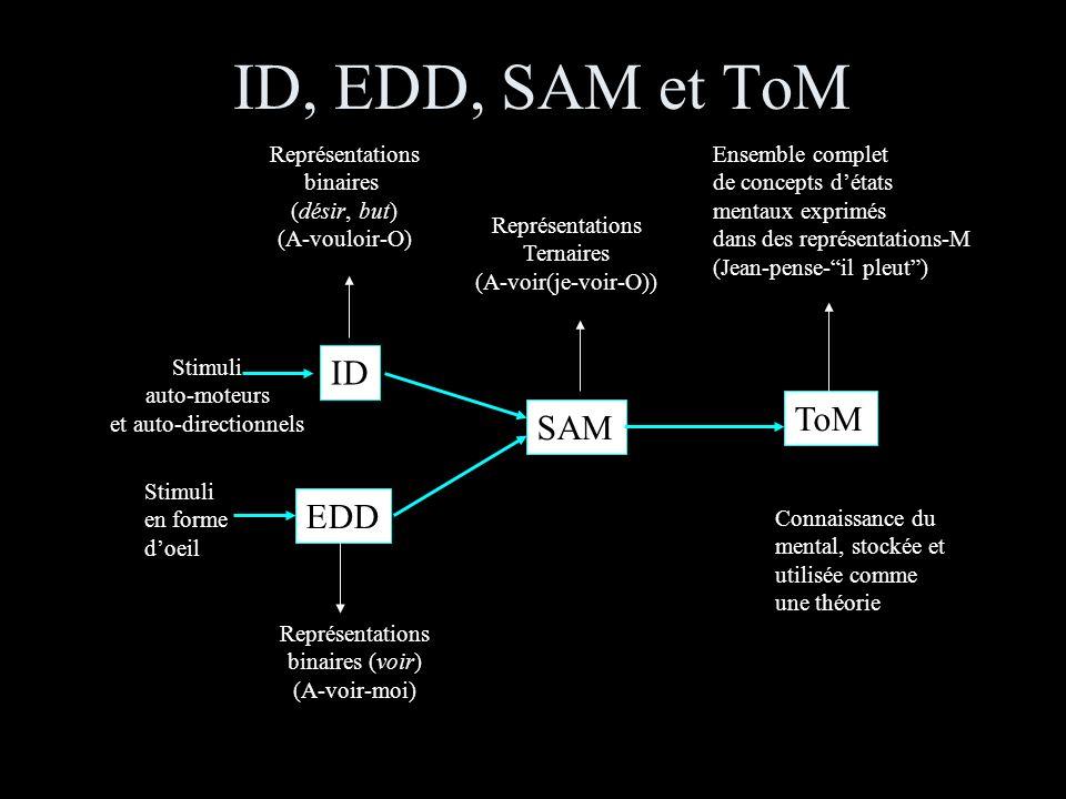 ID, EDD, SAM et ToM Stimuli auto-moteurs et auto-directionnels Stimuli en forme doeil ID EDD SAM ToM Représentations binaires (voir) (A-voir-moi) Représentations binaires (désir, but) (A-vouloir-O) Représentations Ternaires (A-voir(je-voir-O)) Ensemble complet de concepts détats mentaux exprimés dans des représentations-M (Jean-pense-il pleut) Connaissance du mental, stockée et utilisée comme une théorie