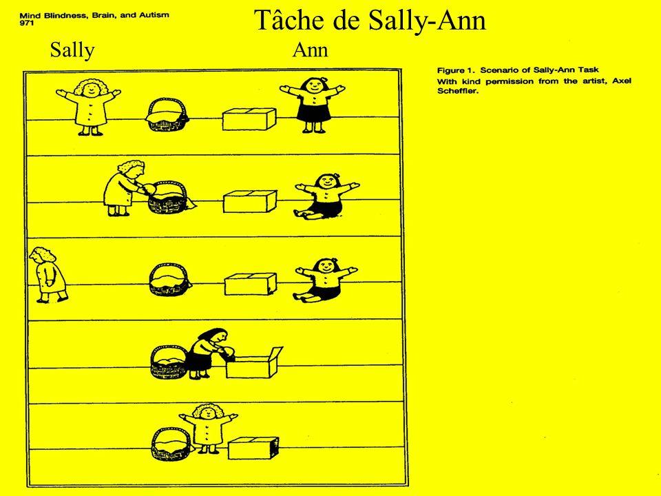 Tâche de Sally-Ann SallyAnn