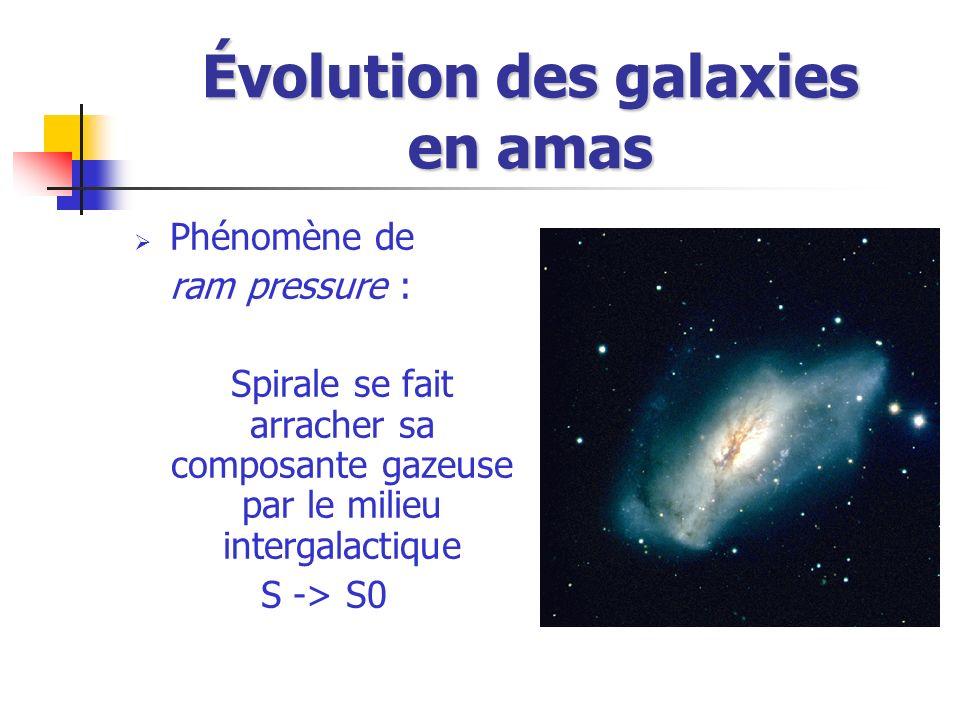 Évolution des galaxies en amas Phénomène de ram pressure : Spirale se fait arracher sa composante gazeuse par le milieu intergalactique S -> S0