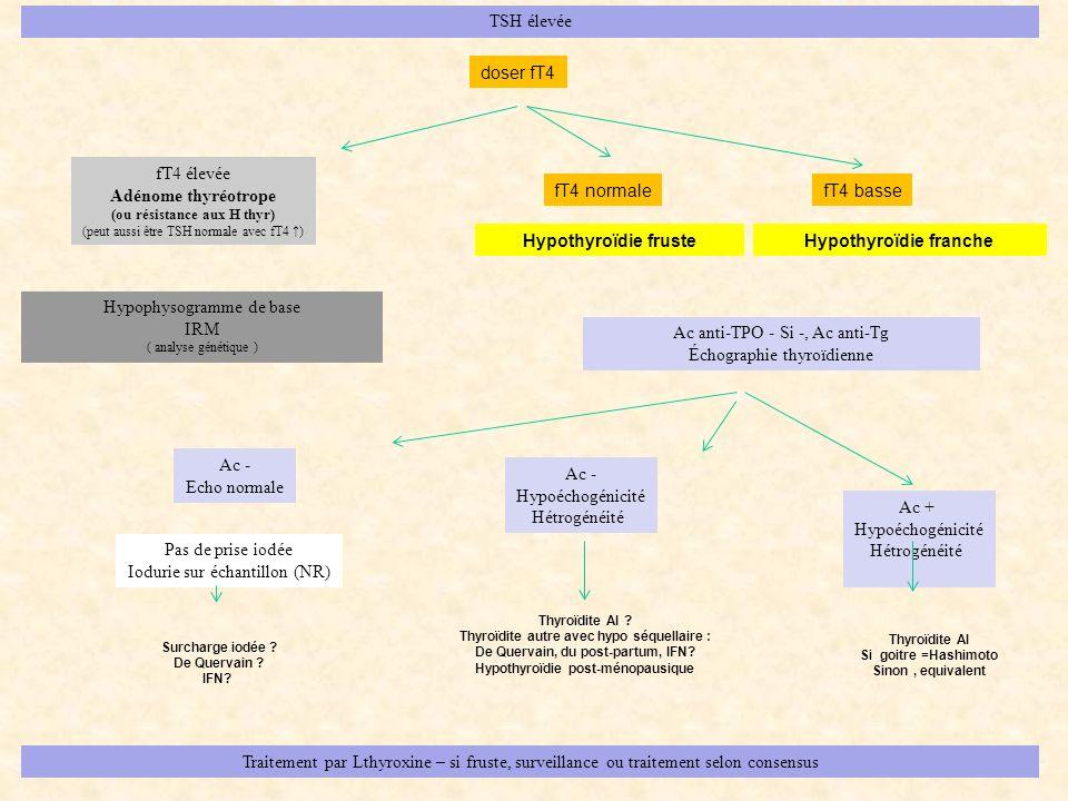 TSH élevée fT4 élevée Adénome thyréotrope (ou résistance aux H thyr) (peut aussi être TSH normale avec fT4 ) fT4 normale doser fT4 fT4 basse Hypophyso