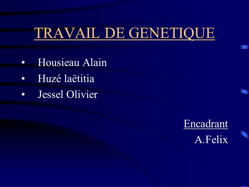 TRAVAIL DE GENETIQUE Housieau Alain Huzé laëtitia Jessel Olivier Encadrant A.Felix