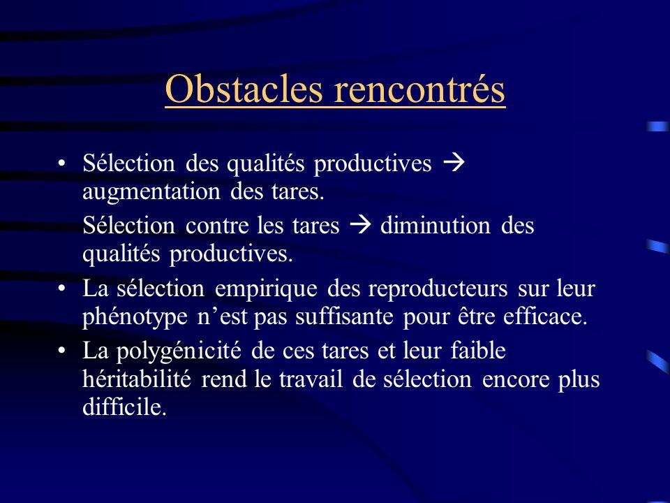 Obstacles rencontrés Sélection des qualités productives augmentation des tares. Sélection contre les tares diminution des qualités productives. La sél