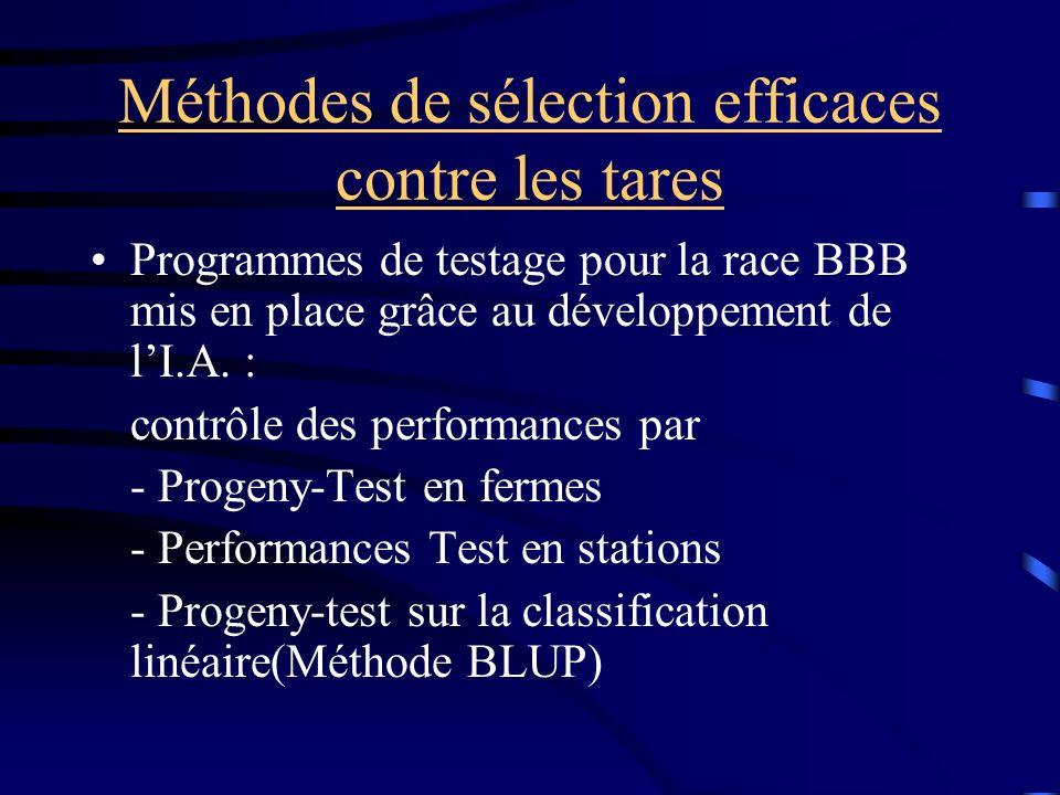 Méthodes de sélection efficaces contre les tares Programmes de testage pour la race BBB mis en place grâce au développement de lI.A. : contrôle des pe