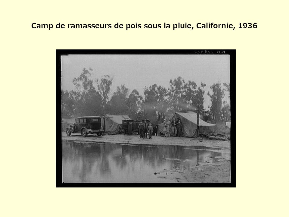 Camp de ramasseurs de pois sous la pluie, Californie, 1936