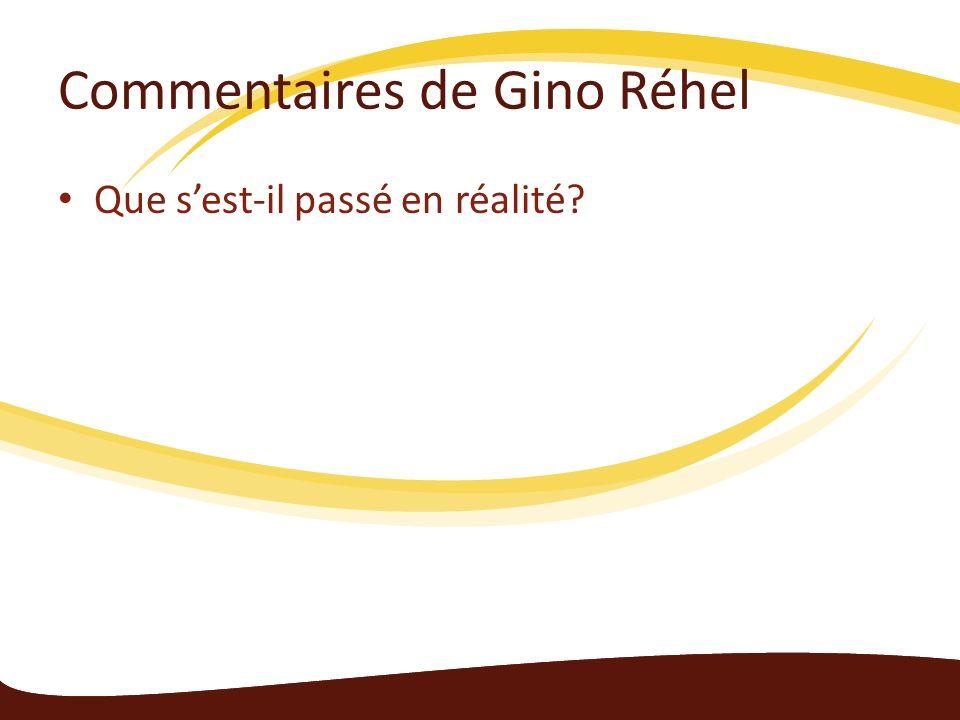 Commentaires de Gino Réhel Que sest-il passé en réalité?