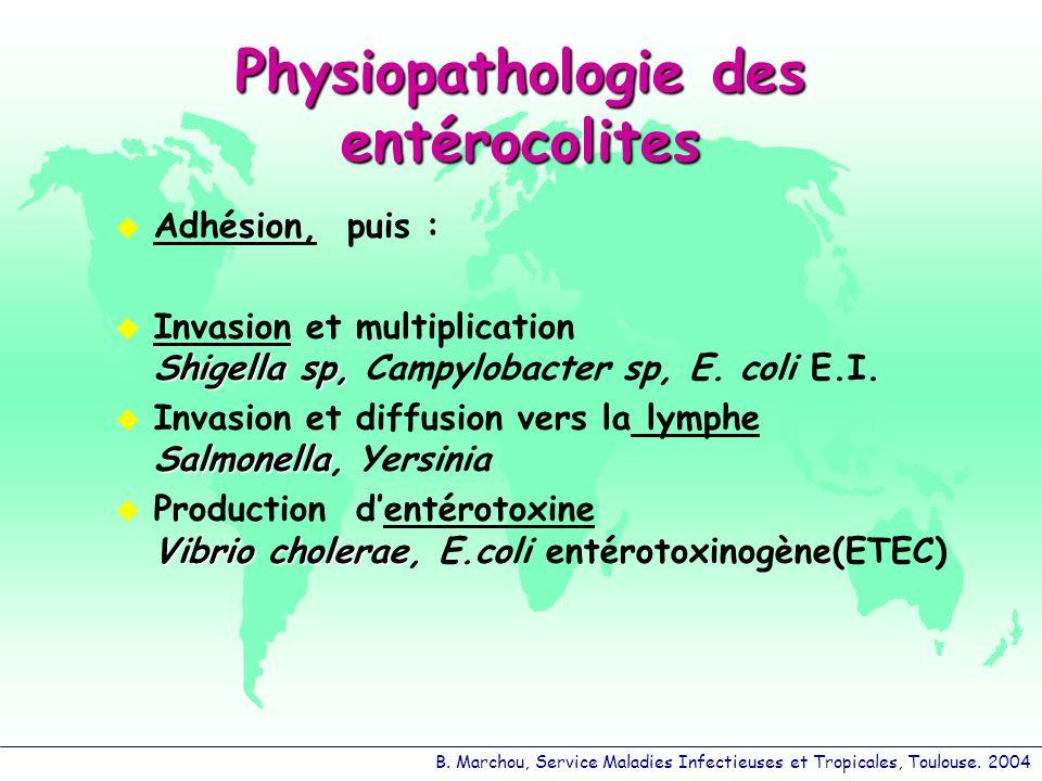 B. Marchou, Service Maladies Infectieuses et Tropicales, Toulouse. 2004 Physiopathologie des entérocolites Adhésion, puis : Shigella sp, Invasion et m