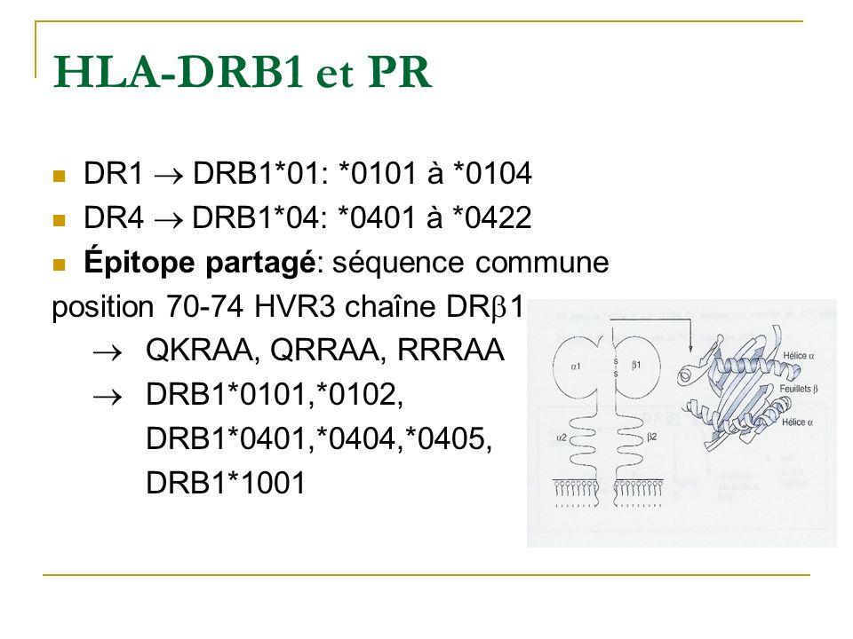 HLA-DRB1 et PR DR1 DRB1*01: *0101 à *0104 DR4 DRB1*04: *0401 à *0422 Épitope partagé: séquence commune position 70-74 HVR3 chaîne DR 1 QKRAA, QRRAA, RRRAA DRB1*0101,*0102, DRB1*0401,*0404,*0405, DRB1*1001