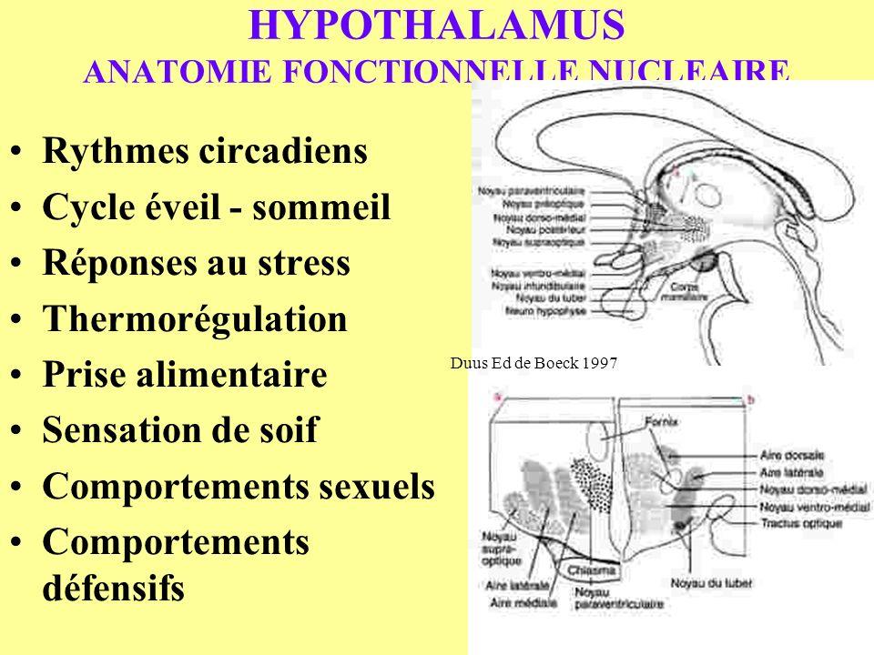 HYPOTHALAMUS ANATOMIE FONCTIONNELLE NUCLEAIRE Rythmes circadiens Cycle éveil - sommeil Réponses au stress Thermorégulation Prise alimentaire Sensation
