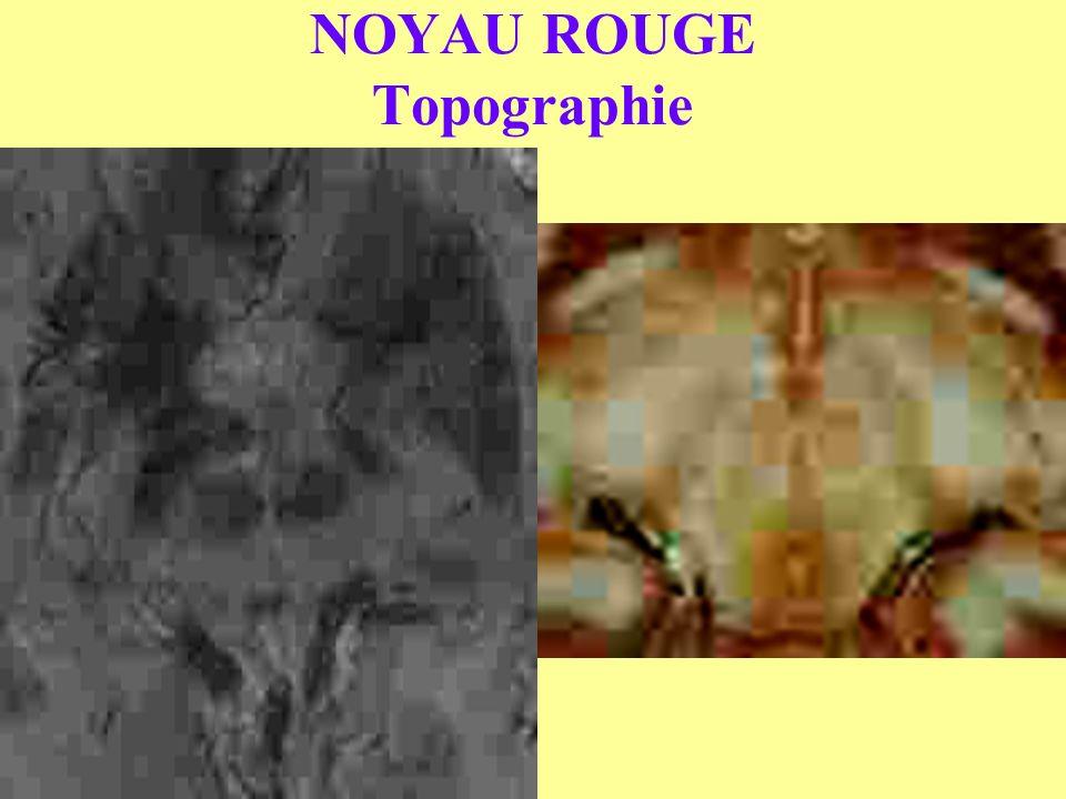 NOYAU ROUGE Topographie