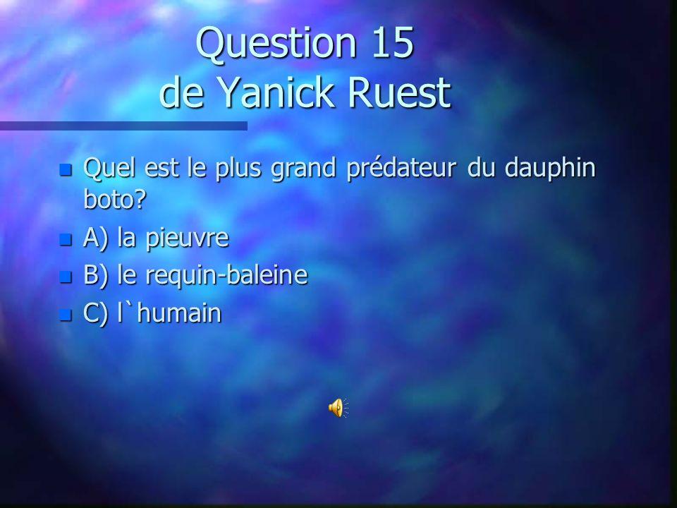 Question 14 de Frédérik Léveillé n Le grand requin blanc est-il un requin mangeur d`homme? n A) Oui n B) Non