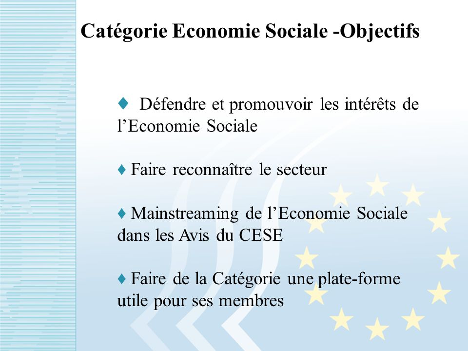 Catégorie Economie Sociale -Objectifs Défendre et promouvoir les intérêts de lEconomie Sociale Faire reconnaître le secteur Mainstreaming de lEconomie Sociale dans les Avis du CESE Faire de la Catégorie une plate-forme utile pour ses membres