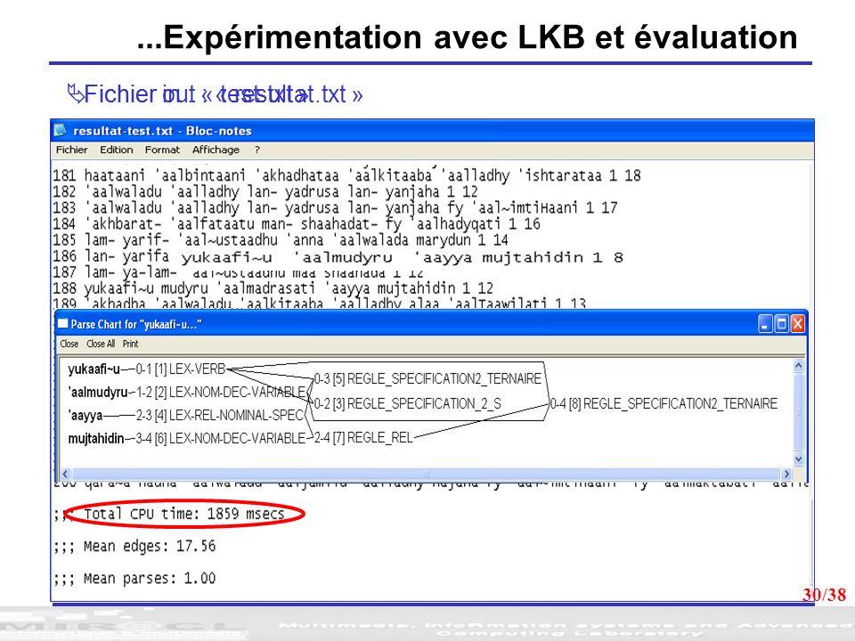 30 Fichier in : « test.txt » Fichier out : « resultat.txt »...Expérimentation avec LKB et évaluation 30/38