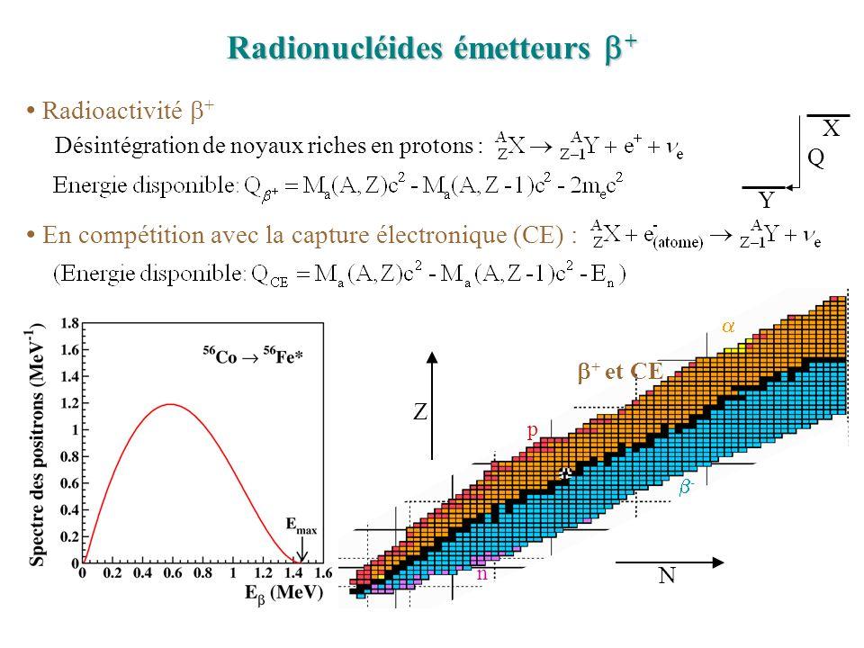 Radionucléides émetteurs + Radioactivité + Désintégration de noyaux riches en protons : En compétition avec la capture électronique (CE) : + et CE - p n X Y Q N Z