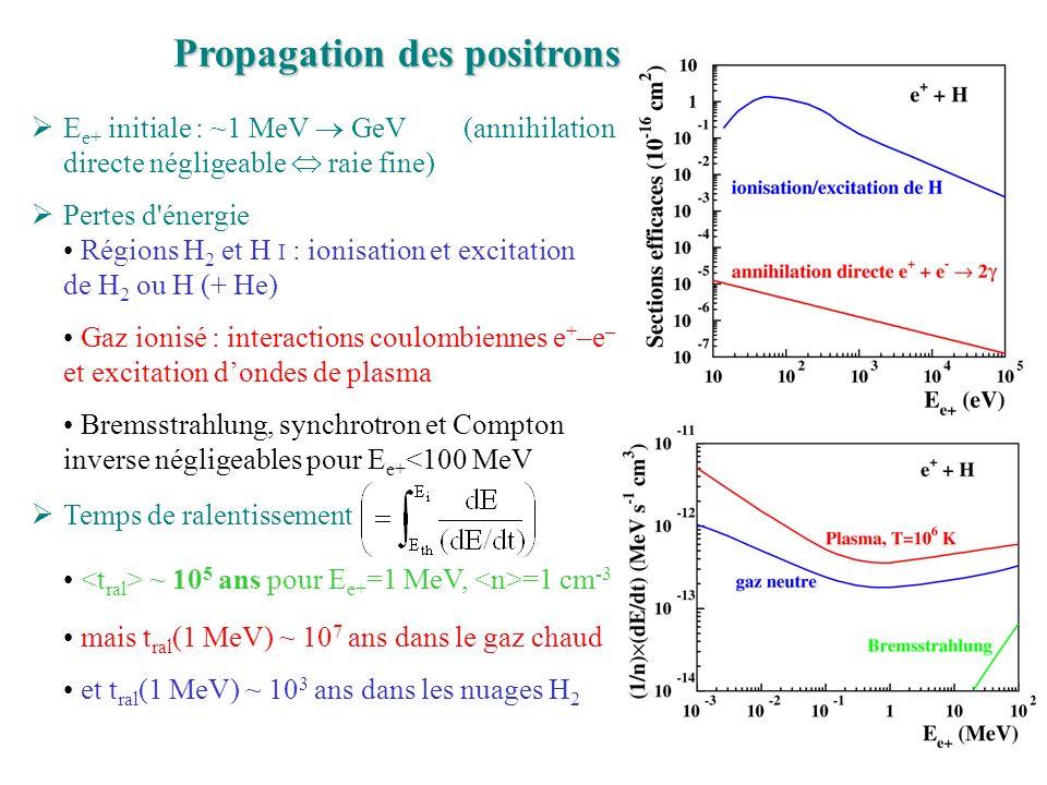 Propagation des positrons E e+ initiale : ~1 MeV GeV (annihilation directe négligeable raie fine) Pertes d énergie Régions H 2 et H I : ionisation et excitation de H 2 ou H (+ He) Gaz ionisé : interactions coulombiennes e + –e – et excitation dondes de plasma Bremsstrahlung, synchrotron et Compton inverse négligeables pour E e+ <100 MeV Temps de ralentissement ~ 10 5 ans pour E e+ =1 MeV, =1 cm -3 mais t ral (1 MeV) ~ 10 7 ans dans le gaz chaud et t ral (1 MeV) ~ 10 3 ans dans les nuages H 2