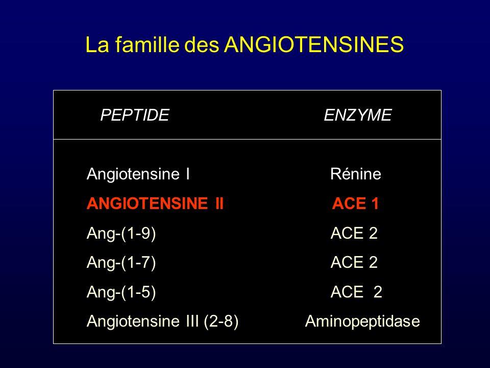 La famille des ANGIOTENSINES PEPTIDE ENZYME Angiotensine I Rénine ANGIOTENSINE II ACE 1 Ang-(1-9) ACE 2 Ang-(1-7) ACE 2 Ang-(1-5) ACE 2 Angiotensine I