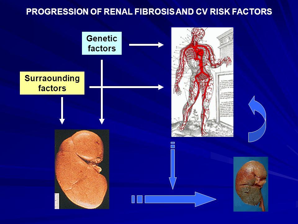 Genetic factors Surraounding factors PROGRESSION OF RENAL FIBROSIS AND CV RISK FACTORS
