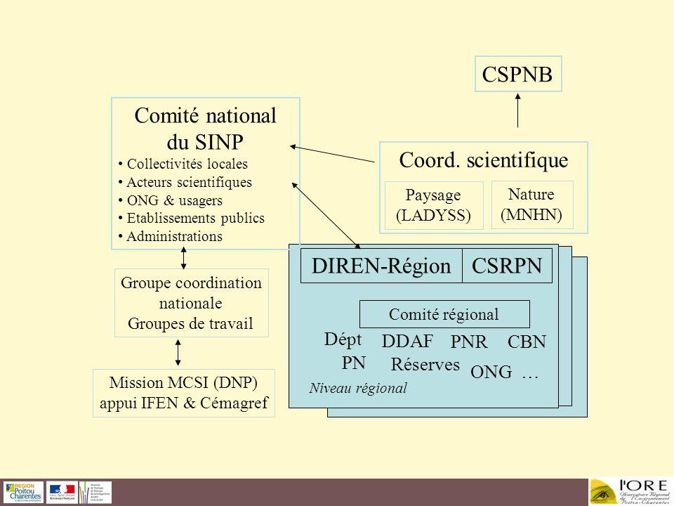 CSPNB Coord. scientifique DIREN-Région Comité régional Niveau régional CSRPN Dépt Réserves PNR PN CBN ONG … DDAF Comité national du SINP Collectivités