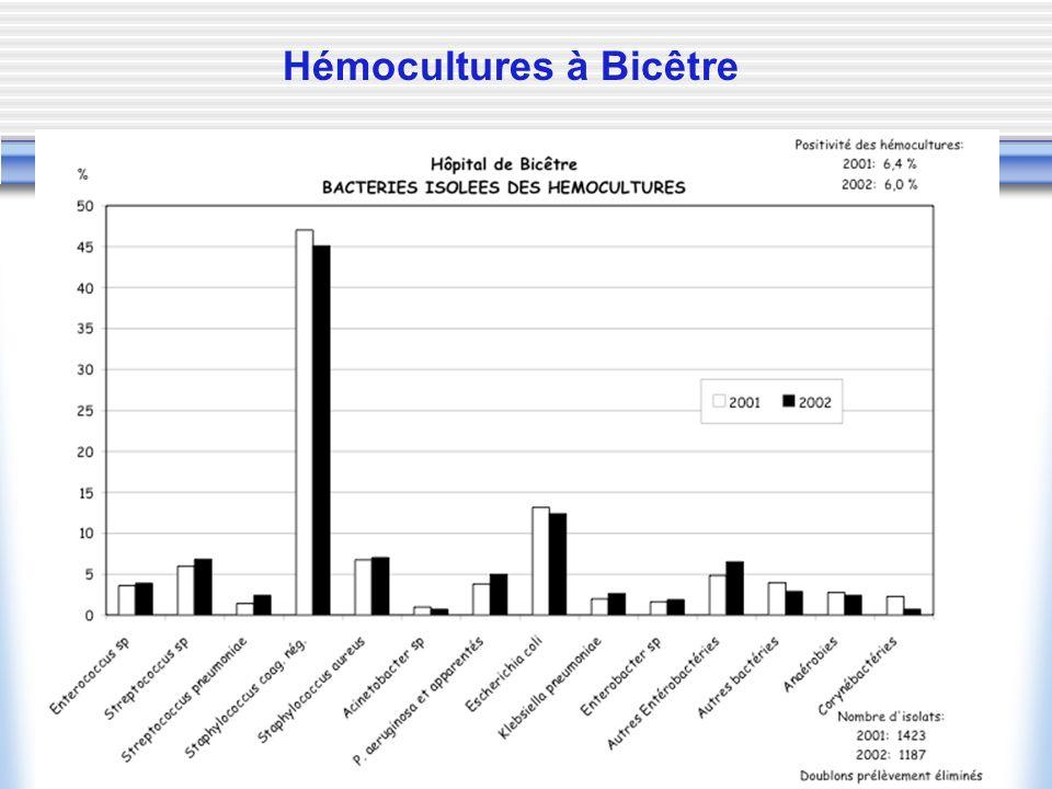 Hémocultures à Bicêtre