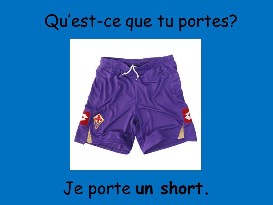 Je porte un short. Quest-ce que tu portes?