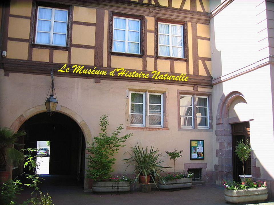 L'École Nationale de Musique et de Théâtre de Colmar