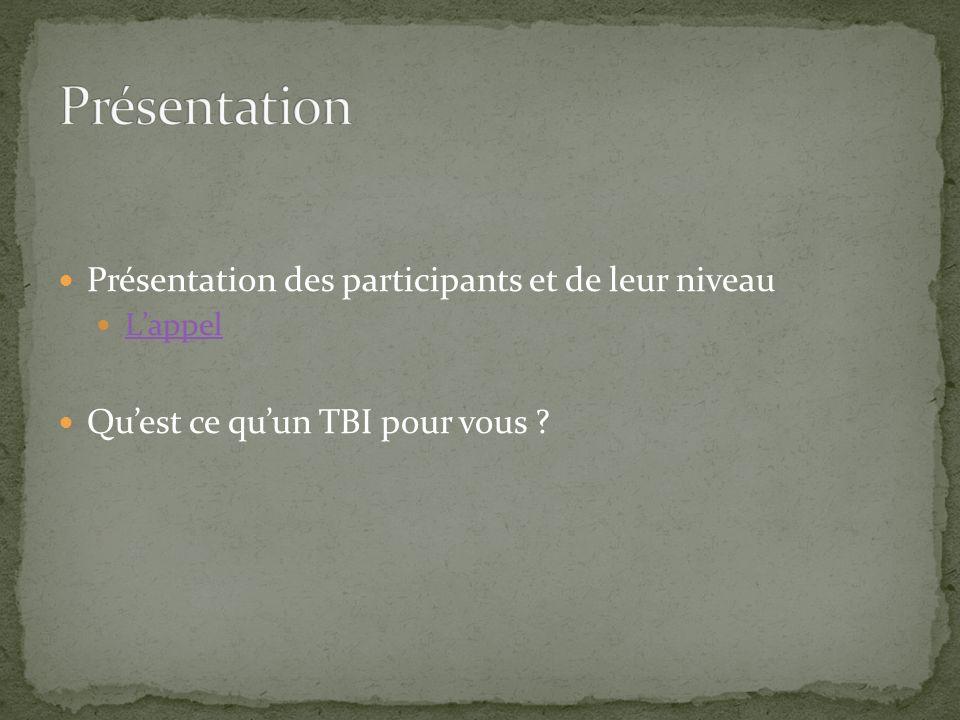 Présentation des participants et de leur niveau Lappel Quest ce quun TBI pour vous ?
