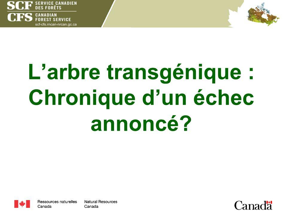 Larbre transgénique : Chronique dun échec annoncé?