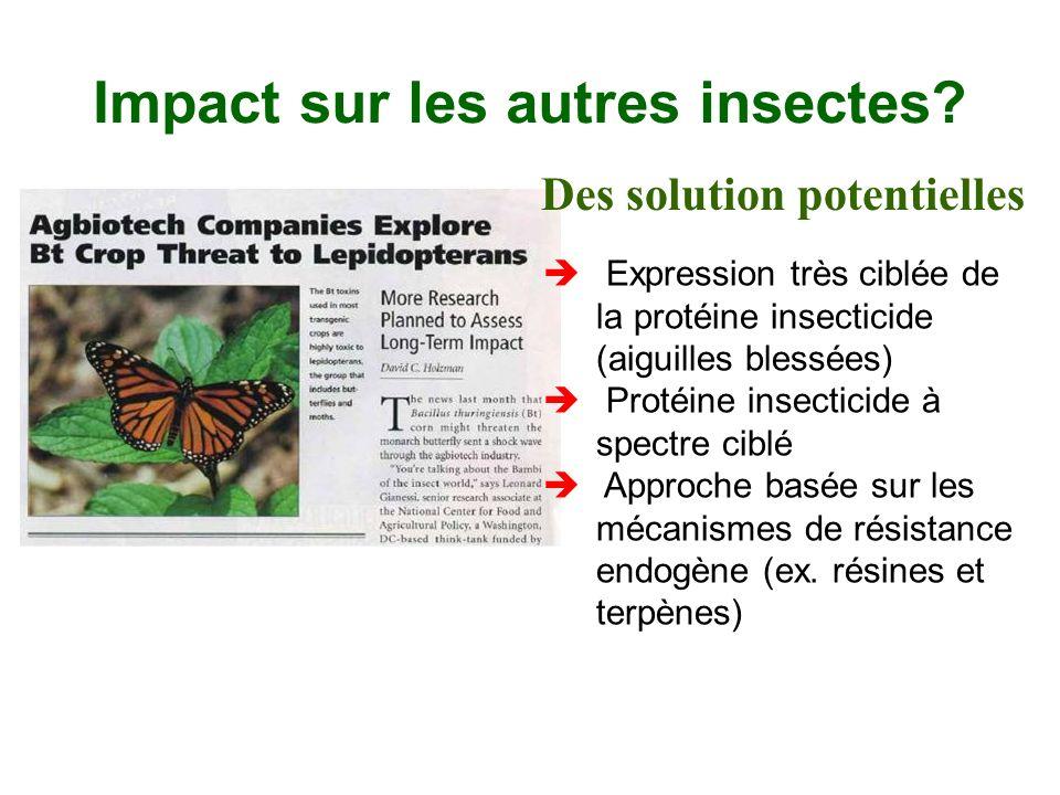 Impact sur les autres insectes? è Expression très ciblée de la protéine insecticide (aiguilles blessées) è Protéine insecticide à spectre ciblé è Appr