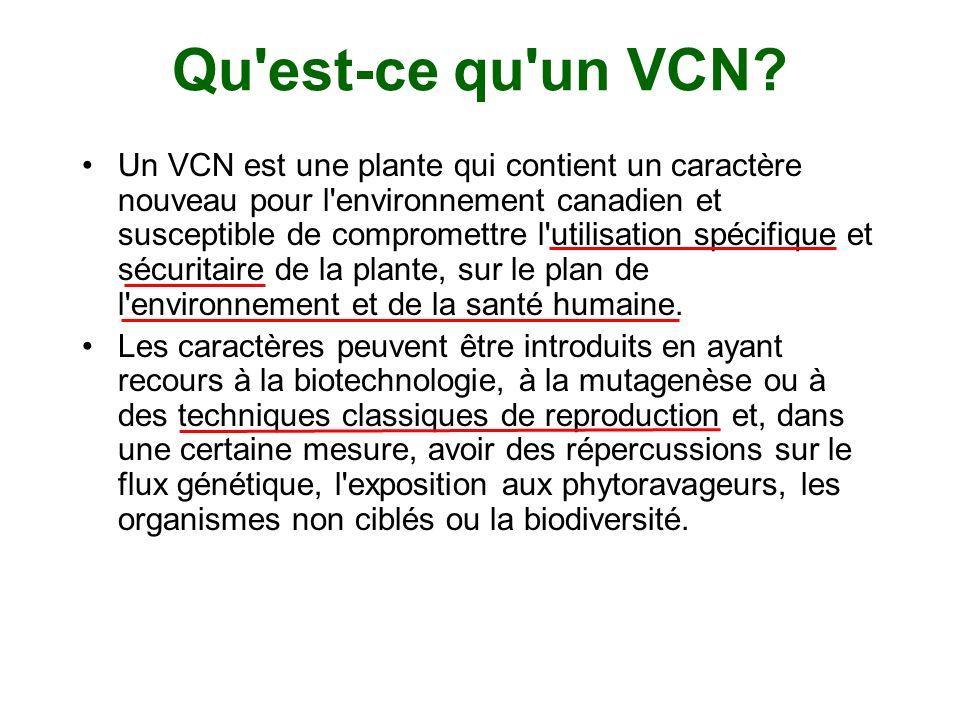 Qu'est-ce qu'un VCN? Un VCN est une plante qui contient un caractère nouveau pour l'environnement canadien et susceptible de compromettre l'utilisatio