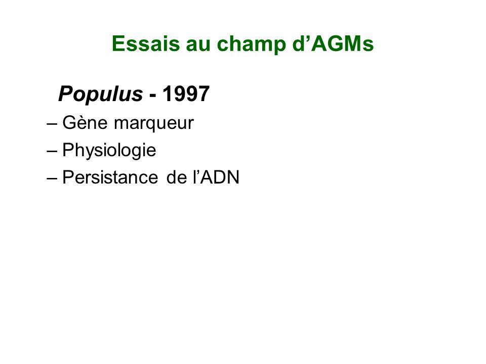 Essais au champ dAGMs Populus - 1997 –Gène marqueur –Physiologie –Persistance de lADN