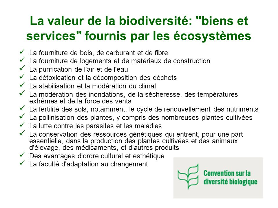 La valeur de la biodiversité: