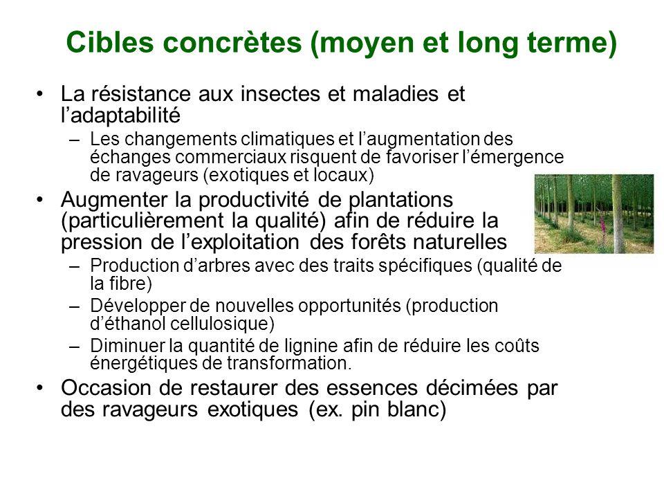 Cibles concrètes (moyen et long terme) La résistance aux insectes et maladies et ladaptabilité –Les changements climatiques et laugmentation des échan