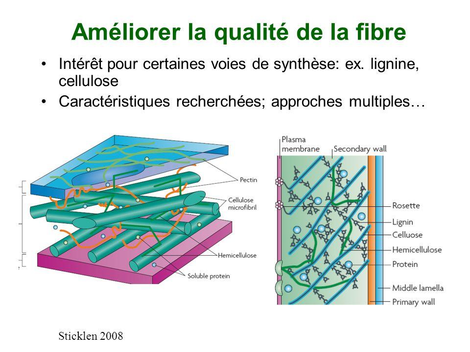 Améliorer la qualité de la fibre Intérêt pour certaines voies de synthèse: ex. lignine, cellulose Caractéristiques recherchées; approches multiples… S