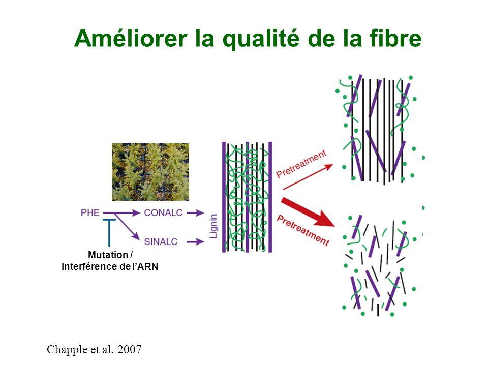 Améliorer la qualité de la fibre Chapple et al. 2007 Croisement ou AGM Mutation / interférence de lARN