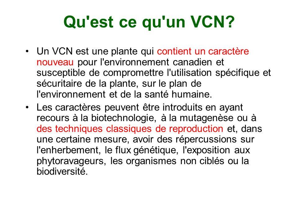 Qu'est ce qu'un VCN? Un VCN est une plante qui contient un caractère nouveau pour l'environnement canadien et susceptible de compromettre l'utilisatio