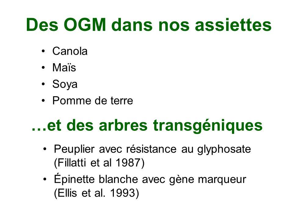 Des OGM dans nos assiettes Canola Maïs Soya Pomme de terre …et des arbres transgéniques Peuplier avec résistance au glyphosate (Fillatti et al 1987) É