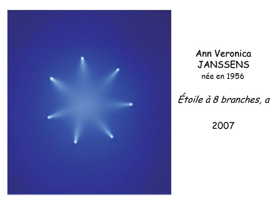 Ann Veronica JANSSENS née en 1956 Étoile à 8 branches, a 2007