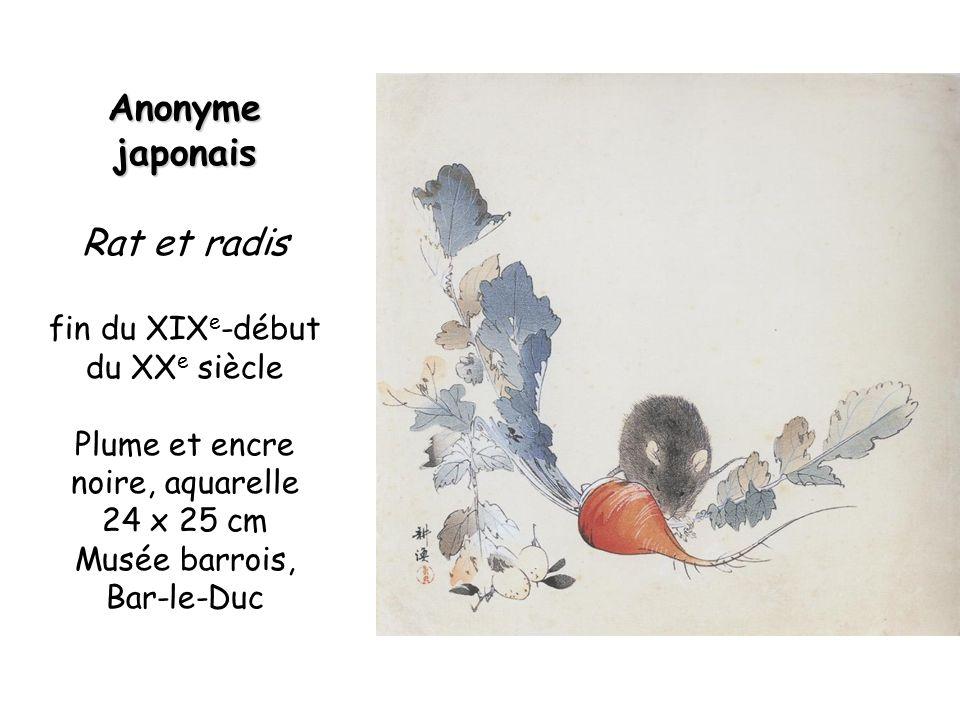 Anonyme japonais Rat et radis fin du XIX e -début du XX e siècle Plume et encre noire, aquarelle 24 x 25 cm Musée barrois, Bar-le-Duc