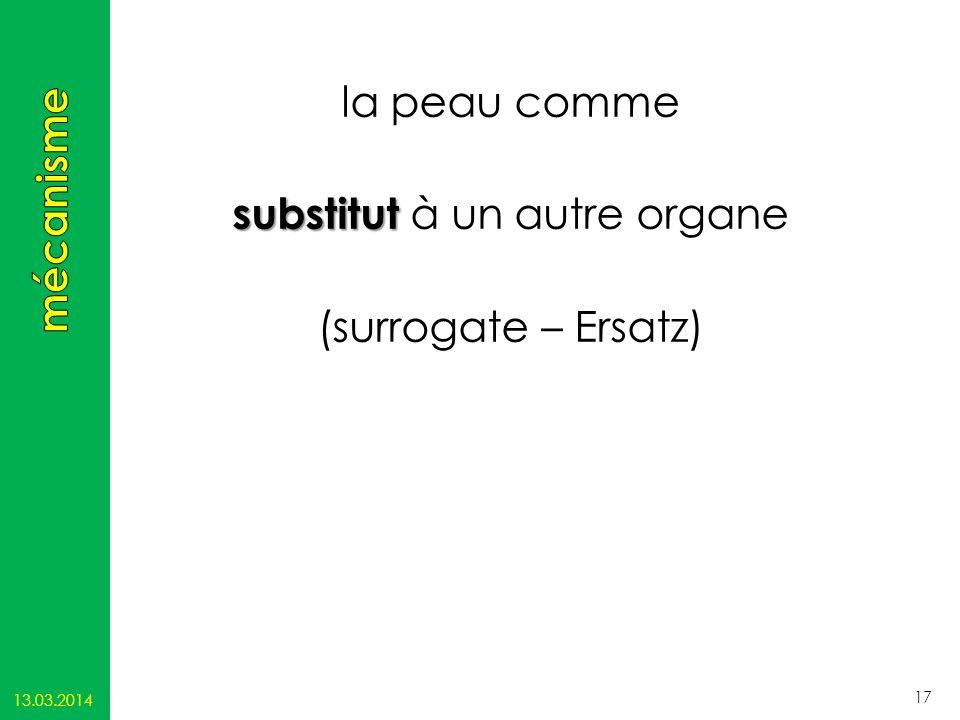 la peau comme substitut substitut à un autre organe (surrogate – Ersatz) 13.03.2014 17