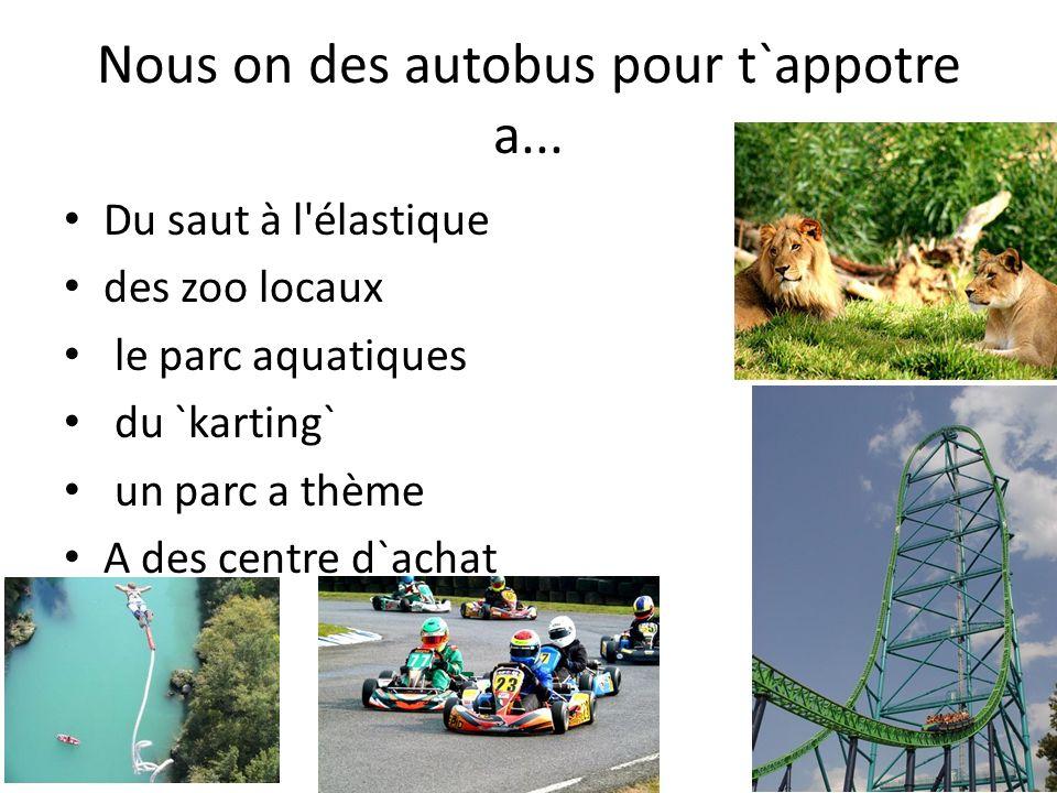 Nous on des autobus pour t`appotre a... Du saut à l'élastique des zoo locaux le parc aquatiques du `karting` un parc a thème A des centre d`achat