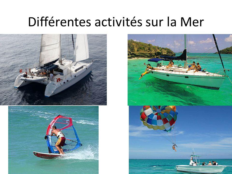 Différentes activités sur la Mer