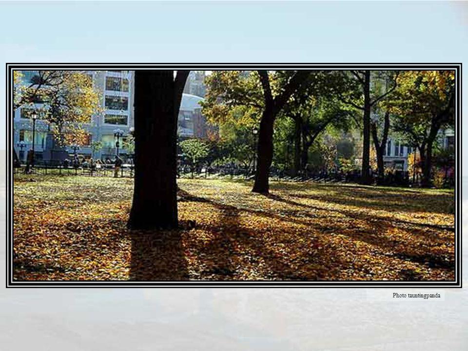 C était un jour d automne ensoleillé, exactement comme celui de l enterrement de mon père, un ciel d azur limpide, quelques nuages blancs, les arbres tachés de couleurs, l air propre et frais, un beau jour qui faisait d Union Square, dis-je à Aura, un jardin du Luxembourg moins les statues des reines.