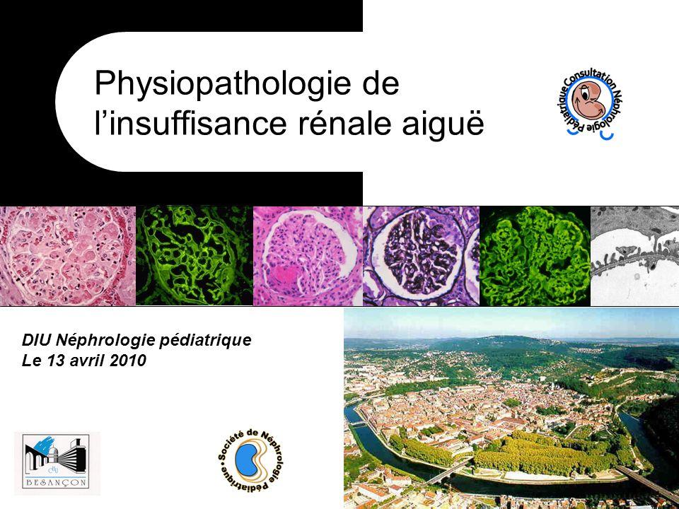 DIU Néphrologie pédiatrique Le 13 avril 2010 Physiopathologie de linsuffisance rénale aiguë
