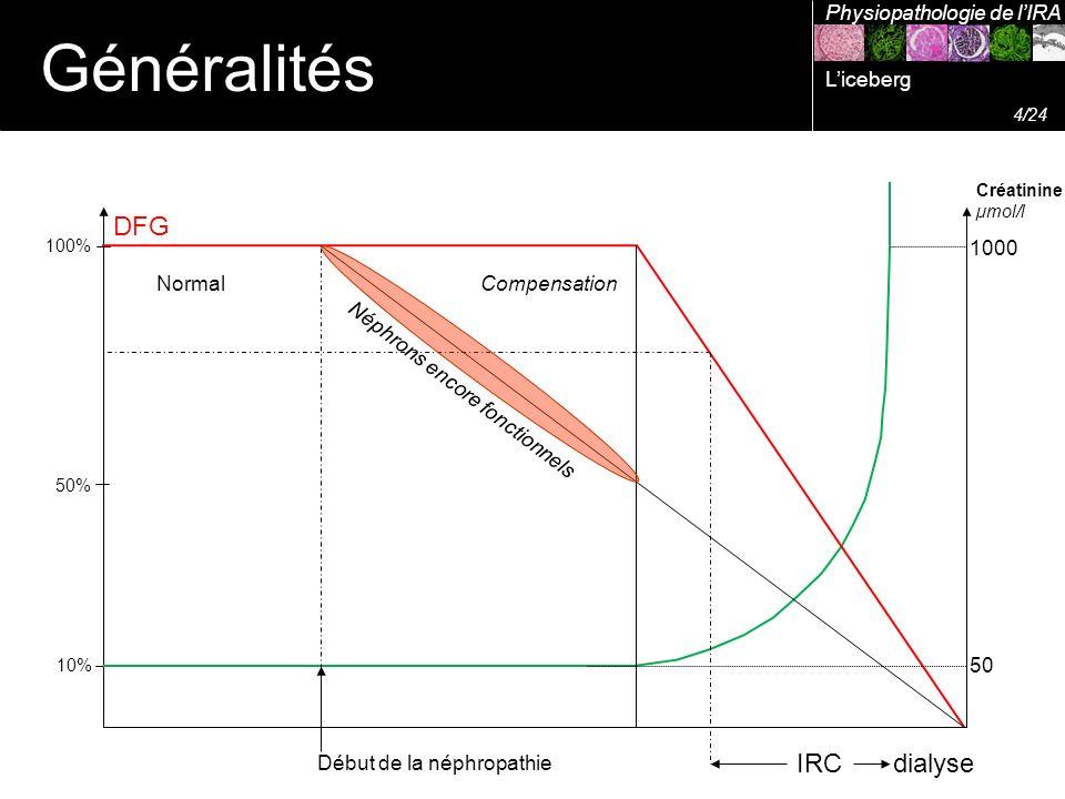 Créatinine µmol/l DFG 100% 50% 10% Début de la néphropathie 50 1000 Néphrons encore fonctionnels IRC dialyse Généralités Physiopathologie de lIRA Comp