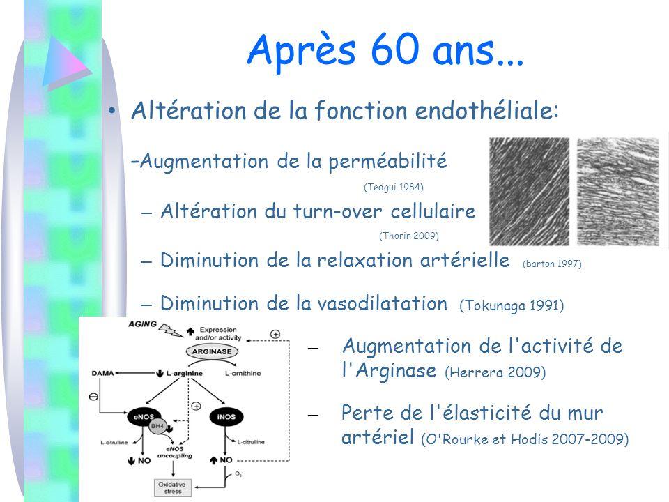 Après 60 ans... Altération de la fonction endothéliale: - Augmentation de la perméabilité (Tedgui 1984) – Altération du turn-over cellulaire (Thorin 2