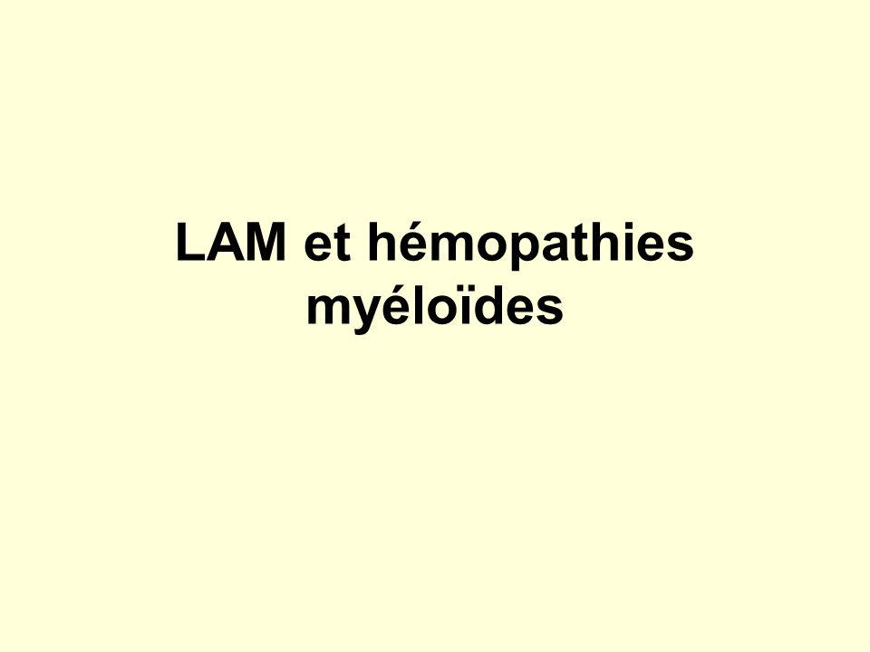 LAM et hémopathies myéloïdes