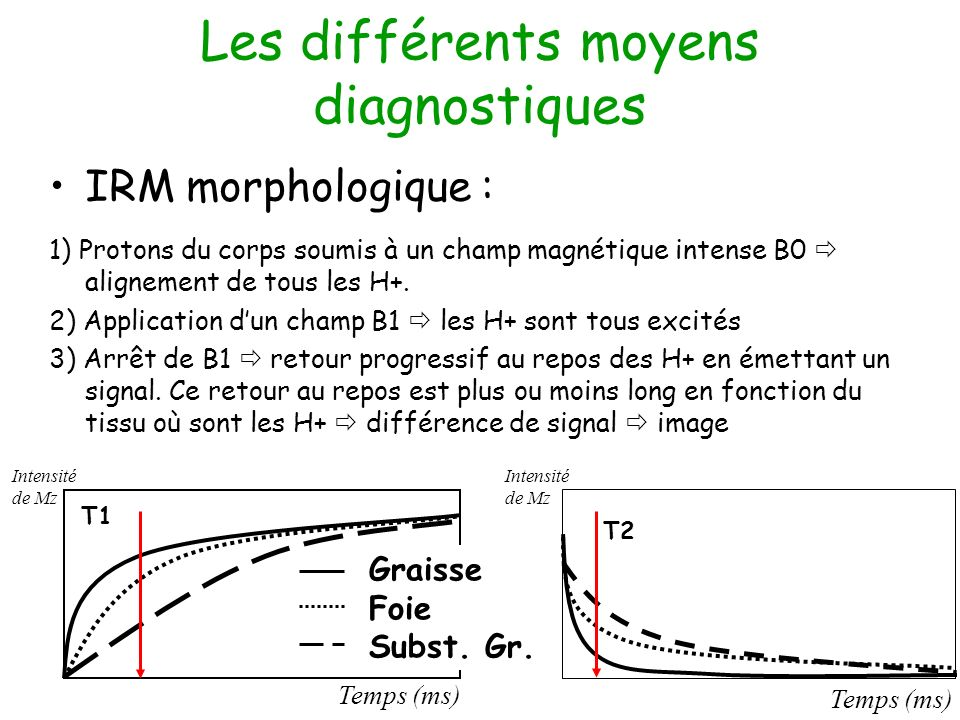 Les différents moyens diagnostiques IRM morphologique : 1) Protons du corps soumis à un champ magnétique intense B0 alignement de tous les H+. 2) Appl