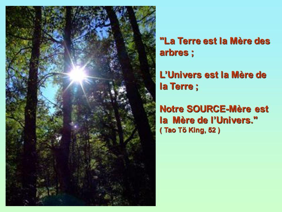 La Terre est la Mère des arbres ; LUnivers est la Mère de la Terre ; Notre SOURCE-Mère est la Mère de lUnivers. ( Tao Tö King, 52 )