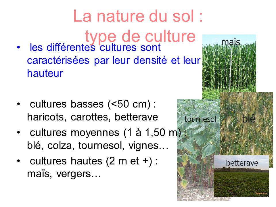 La nature du sol : type de culture les différentes cultures sont caractérisées par leur densité et leur hauteur cultures basses (<50 cm) : haricots, c