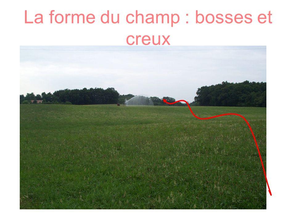 La forme du champ : bosses et creux