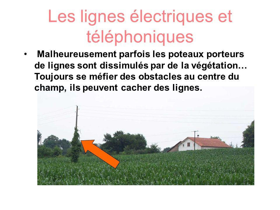Les lignes électriques et téléphoniques Malheureusement parfois les poteaux porteurs de lignes sont dissimulés par de la végétation… Toujours se méfie